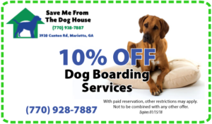 save 10% on holiday boarding