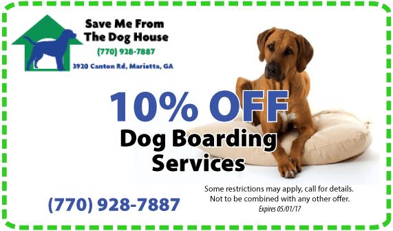 Holiday Dog Boarding
